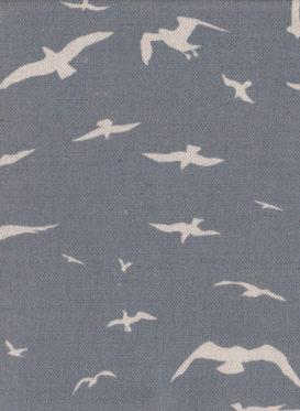 seagulls23