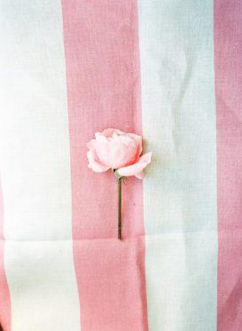 Broadstripe Cherry by Peony & Sage