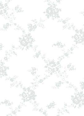 ash grey on white