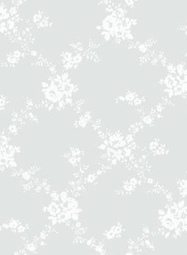 white on ash grey
