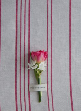 French Ticking Jemima Red