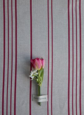 French Ticking Mias Red